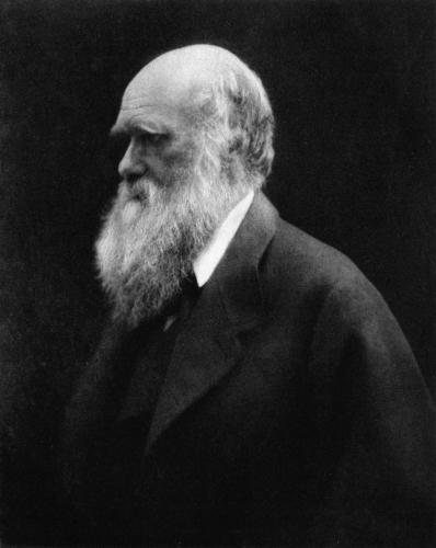 Charles_Darwin_by_Julia_Margaret_Cameron_2.jpg